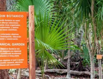 Yaax Che Botanical garden