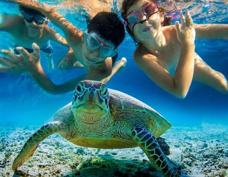 Kids Experiences in the Riviera Maya