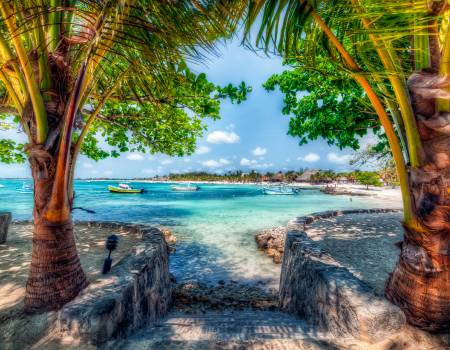 Akumal Step Into Paradise