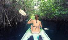 Explore cenotes