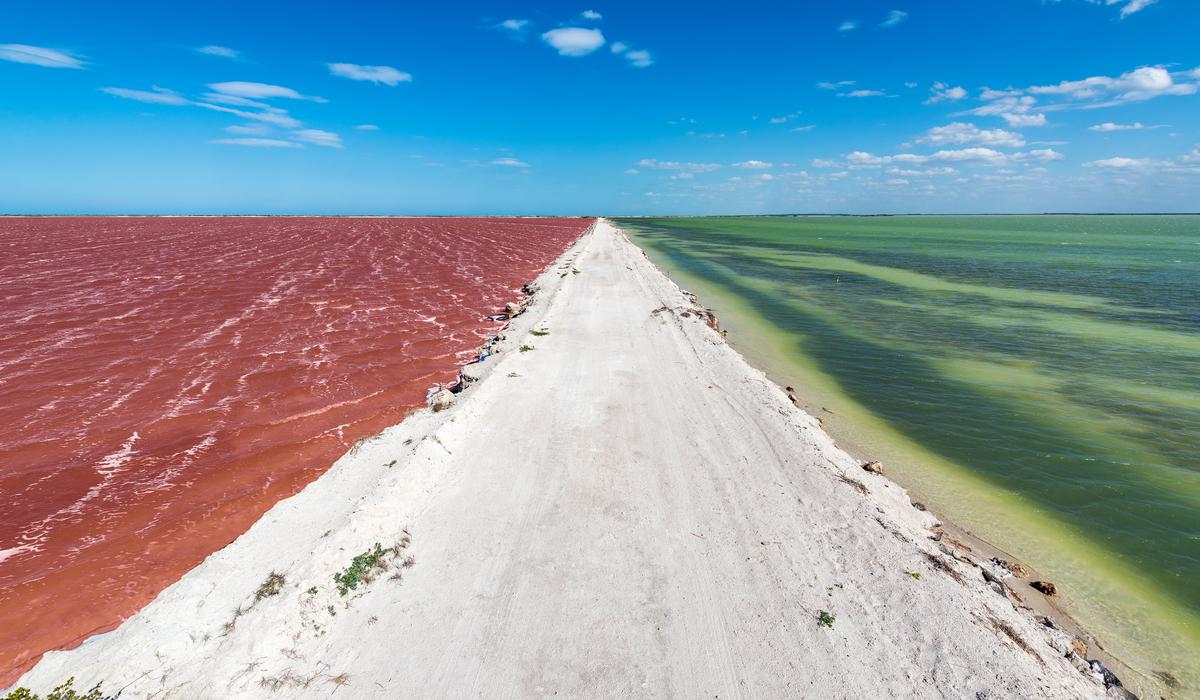 Rio Lagartos Pink Lagoon